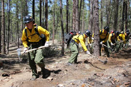 Members of the Granite Mountain Hotshots practice cutting fire lines.