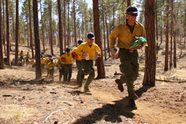 Members of the Granite Mountain Hotshots run during training on the use of emergency fire shelters.