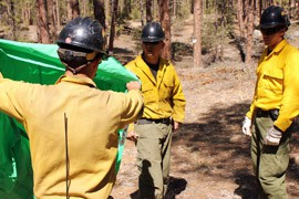 Granite Mountain Hotshots, shown during an April 2012 training session, practice with tarps in place of the emergency fire shelters they would use if trapped in an actual blaze.