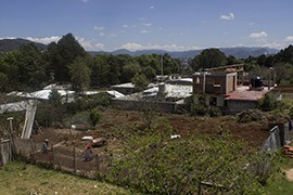 The farm at K'inal Antzeti in the highlands outside San Cristóbal de las Casas, Chiapas. The clinic grows plants here that it uses for traditional medicines.