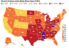 Arizona's adult obesity rate of 26.8 percent in 2013, was up only slightly from the year before, and ranked Arizona 34th among states in terms of obesity rates.