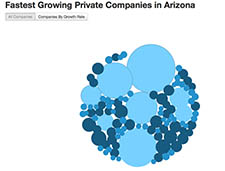 Inc.com firms