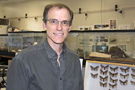 Richard Hofstetter, a forest entomology professor at Northern Arizona University, said It's  important, to study the Pandora moth because as caterpillars they are prodigious eaters. In great numbers they can seriously damage a forest.