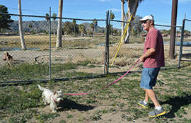 Homeowner Ben Holt wants to restore the neglected Ahwatukee Lakes Golf Course, now cordoned off from some homes by barbed wire.