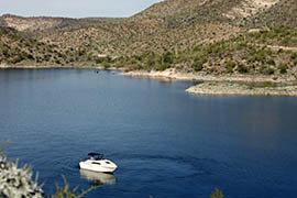 Lake Pleasant north of Phoenix is infested with quagga mussels.