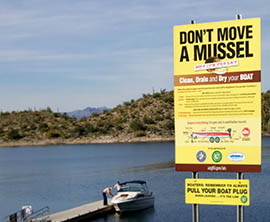 A sign at Lake Pleasant urges boaters to take precautions against transporting quagga mussels elsewhere.