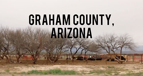 Explore the patchwork process of replanting native vegetation along the Gila River in Graham County in this special video report.