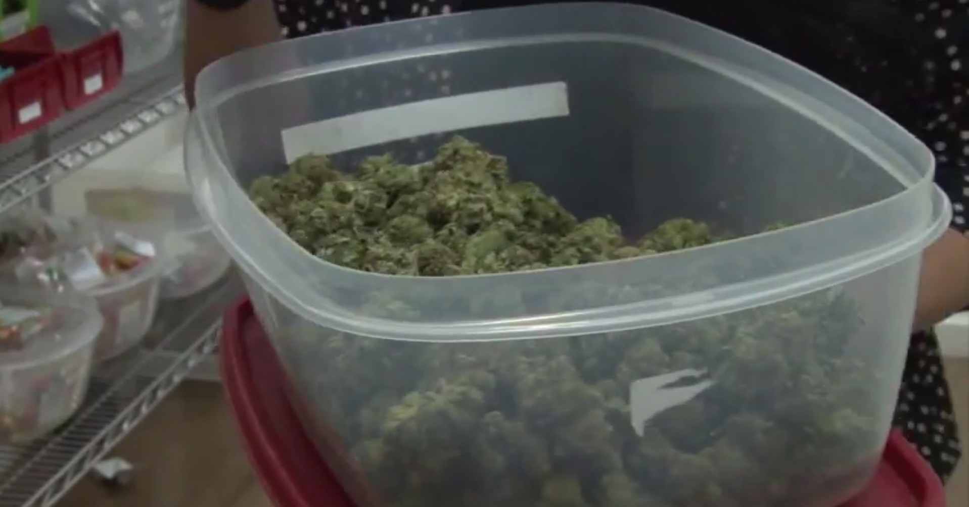 The Marijuana Policy Project submitted petitions for a statewide ballot initiative that would regulate marijuana like alcohol. Activists have been working toward this initiative for months and say it would improve Arizona's future.