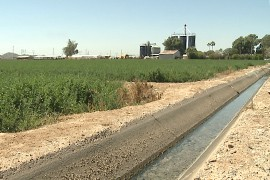 An irrigation ditch carries water at A Tumbling-T Ranches in Goodyear.