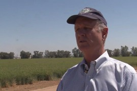 The Central Arizona Project gave a state-one shortage declaration due to the water levels of Lake Mead. If a water shortage was to impact the state, it would mean Arizona agriculture wouldn't be as financially viable, and famers may have to get out of the business or move somewhere else.
